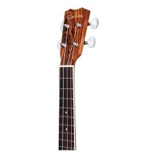 Cordoba Model 15CB Concert Size All Bocote Satin Finish Ukulele Bundle w/bag
